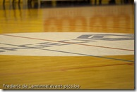 Namur, Belgium - January 27, 2011 : Dexia Namur Capitale - Sint-Katelijne-Waver during the 1/4 final game of the Woman's basket Belgium Cup.
